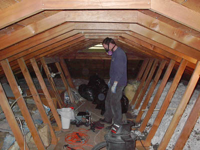 attic in house. tracy in the attic house t